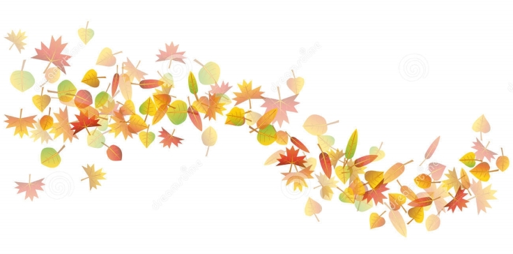 autumn-leaves-illustration-colorful-wave-white-background-32573252