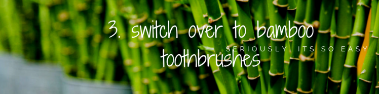 3. switch over to bamboo toothbrushes.png